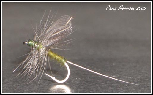 Split Hackle Wing BWO #22