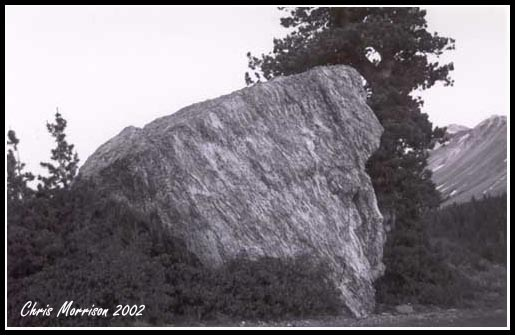 Random Rock.  A little washed out, but still decent contrast...I think...
