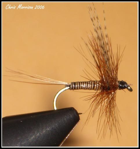 Quill Body March Brown #18