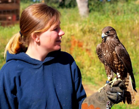 Kaylee and a Barbary Falcon