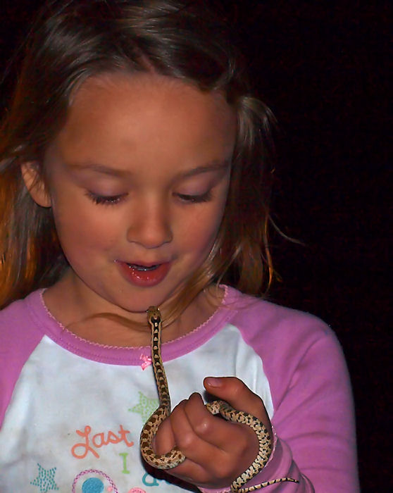 Zayne and a Great Basin Gophersnake-Pituophis catenifer deserticola