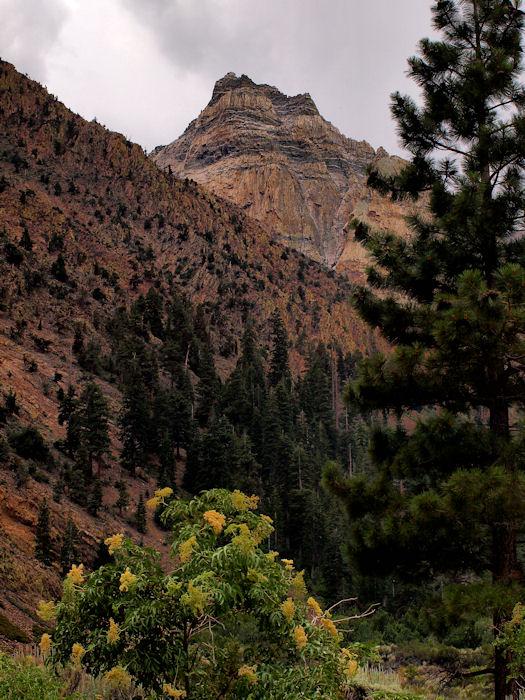 Pine Creek Canyon2