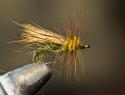 #16 Olive Stonefly