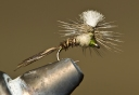 #18 Parachute Pheasant Tail Emerger